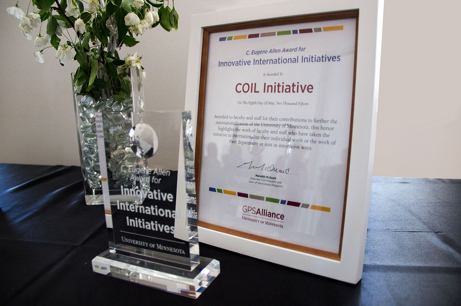 Innovative International Initiatives Award